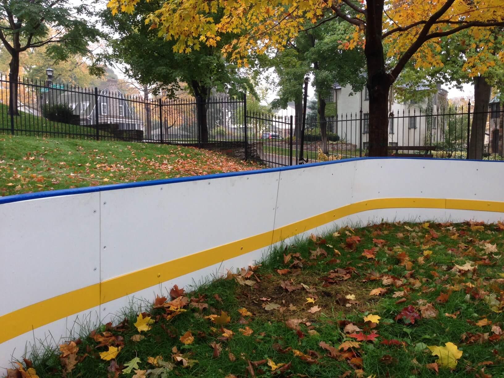 d1 backyard rink
