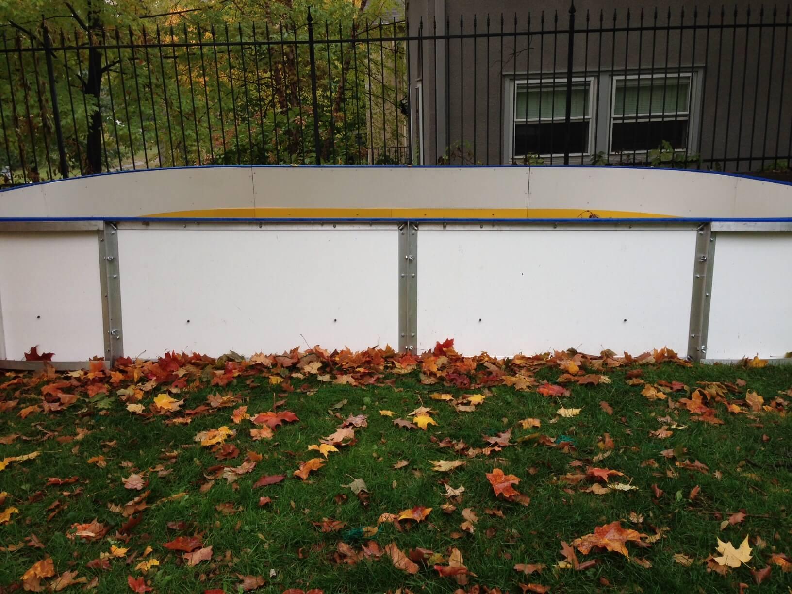 backyard rink tips