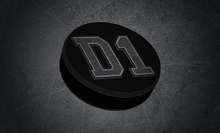 Ice Rink Videos On D1 Synthetic Ice Hockey Boards D1 Backyard Rinks
