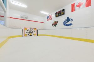 Basement Synthetic Ice Rink - Kissimmee, FL