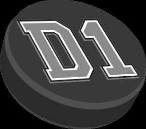 D1 Backyard Rinks Logo