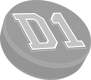 D1 Backyard Rinks Logo