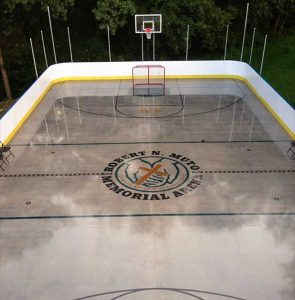 Year Round Backyard Rink